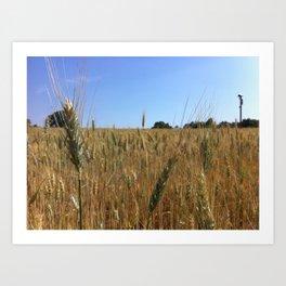 Ear of Wheat Art Print