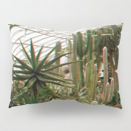 Cactus Haze Pillow Sham