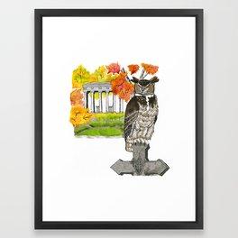 Great Horned Owl in Graceland Cemetery Framed Art Print