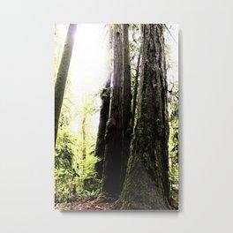 hideout Metal Print