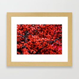 Festive Berries 1 Framed Art Print