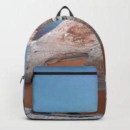 Rock mountain lake Backpack