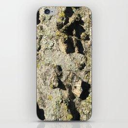 Listening to Nature iPhone Skin