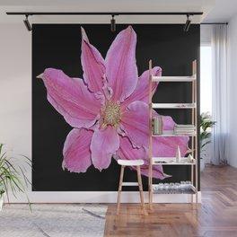 Pink & Black Wall Mural