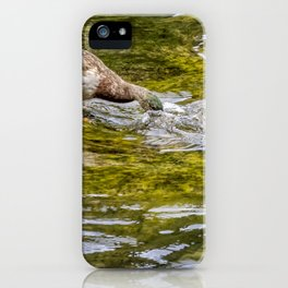 Dabbling iPhone Case