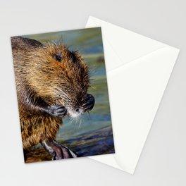 Cute Nutria Stationery Cards