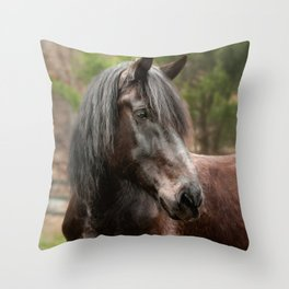 Friesian Horse Throw Pillow