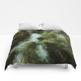 Grace Beneath The Pines Comforters