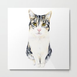 Little cat Harry Metal Print
