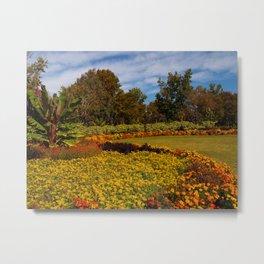 USA Dallas Arboretum Autumn Nature Gardens Tagetes Lawn Trees Metal Print