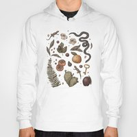 florida Hoodies featuring Florida Nature Walks by Jessica Roux