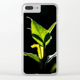 Green on black Clear iPhone Case