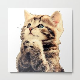 CUTE--CAT Metal Print