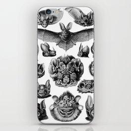 Ernst Haeckel Bats iPhone Skin
