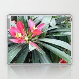 Vibrant Red Flowers Laptop & iPad Skin
