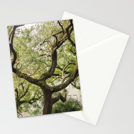 In The Tree Tops Stationery Cards