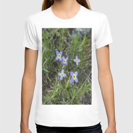 Thyme Leaved Bluets T-shirt