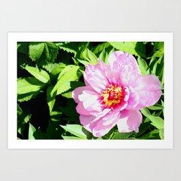 Plethora of Pink Petals Art Print