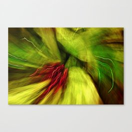 Abstract Red & Green Canvas Print