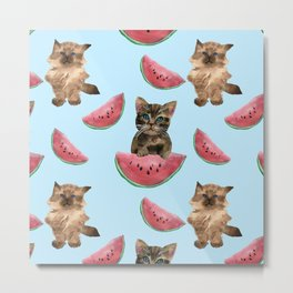 Kittens and sweet watermelon Metal Print