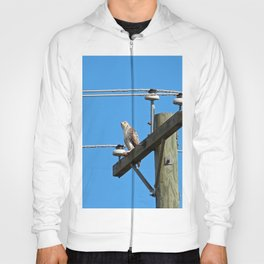 Red Tailed Hawk on Telephone Pole 2 Hoody