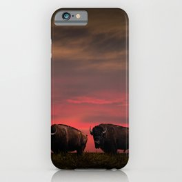 Two American Buffalo Bison at Sunset iPhone Case