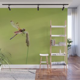 Blood Pennant Dragon Fly Wall Mural