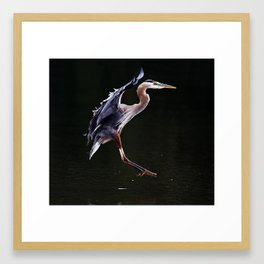 Great Blue Heron in Profile | Art | Print | Wildife | Photography Framed Art Print