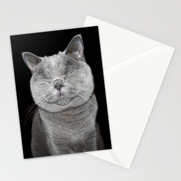 Cat Paparazzi Stationery Cards