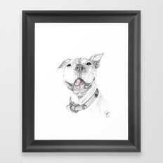 A Smile is Worth a Thousand Words :: A Pit Bull Smile Framed Art Print