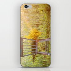 Remnants of a Summer Day iPhone & iPod Skin