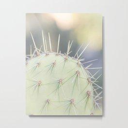 Cactus 1804 - Nature Print Metal Print
