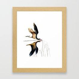 Birds illustration Framed Art Print