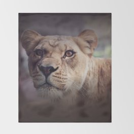 Lioness Throw Blanket
