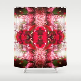 Diamond Orbs of crimson calcite Shower Curtain