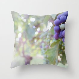 Sunlight on the Grape Vines Throw Pillow