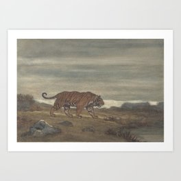 Vintage Illustration of a Striped Tiger (1875) Art Print