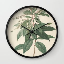 clethra arborea Redoute Roses 3 Wall Clock