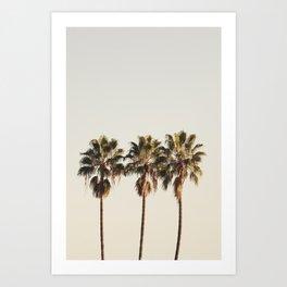 Golden Palms Art Print