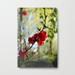 Bold Red Flower Metal Print