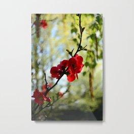 Bold Red Flower Metal Print