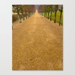 Orange Path Canvas Print