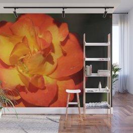 Orange Flower Wall Mural