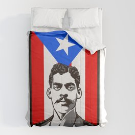 Arturo Alfonso Schomburg - Historian And Activist Comforters