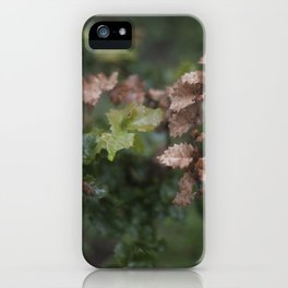 Oak Leaves iPhone Case