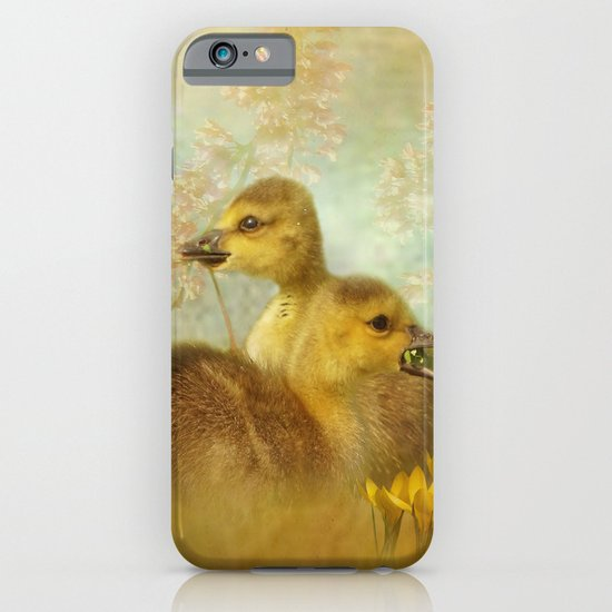 Under the Red Bud Tree iPhone & iPod Case