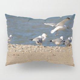 Landing | Seagull Photography Pillow Sham