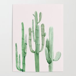 Three Amigos Pink + Green Poster