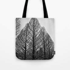 winter session Tote Bag
