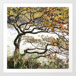 The tree talks Art Print